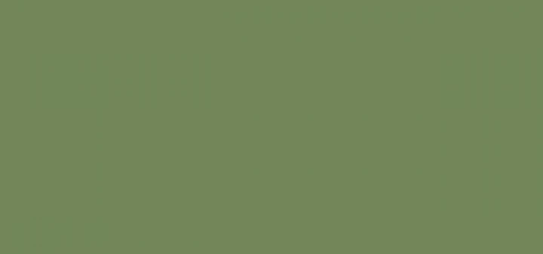 Title Light Green 72855c