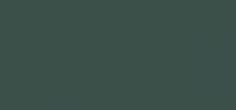 Title Dark Green 3d504a